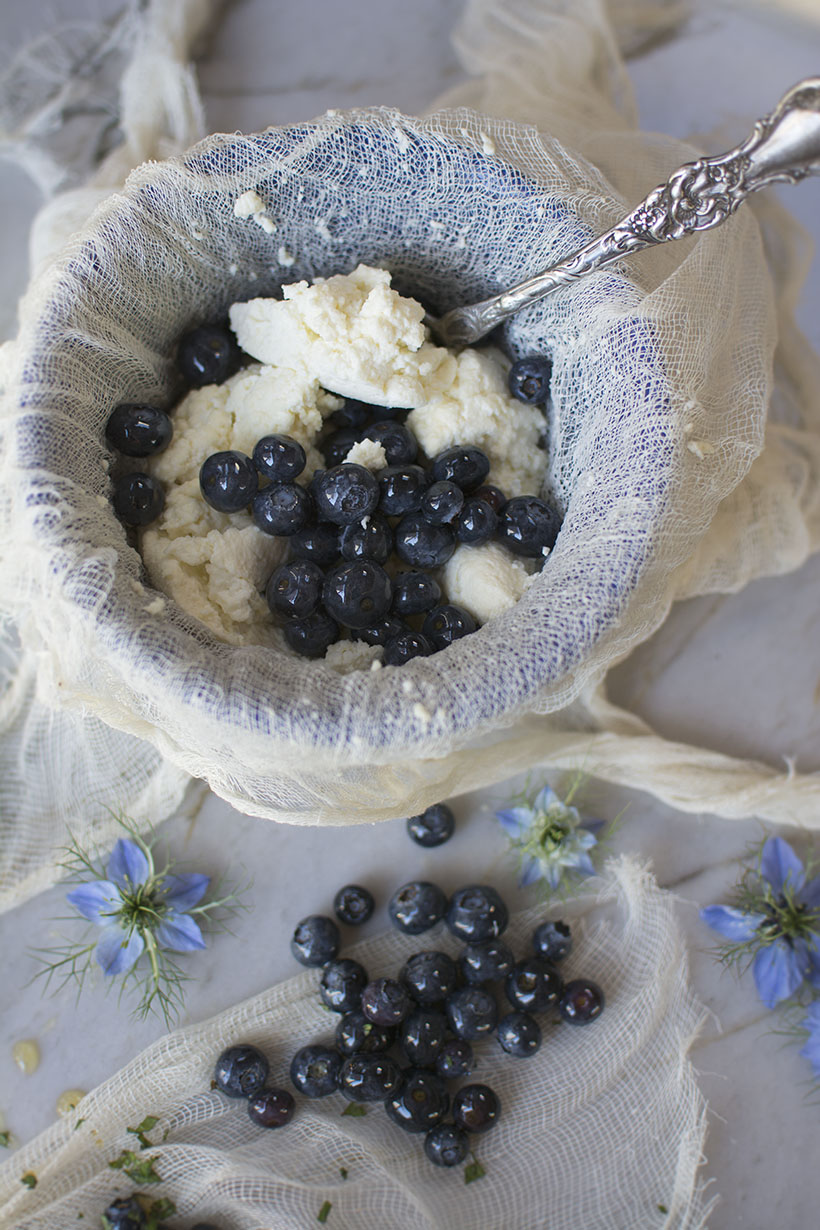 Ricotta Cheesecloth