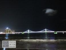 Busan Skyline & Gwangan Bridge