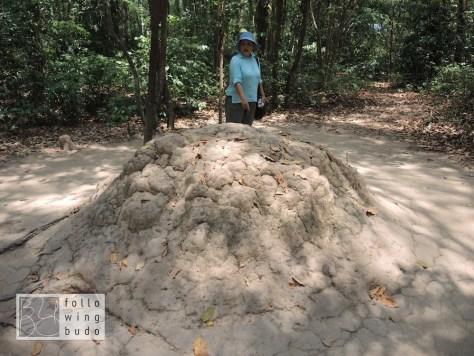 Ein als Termitenhügel getarnter Teil des Lüftungssystems