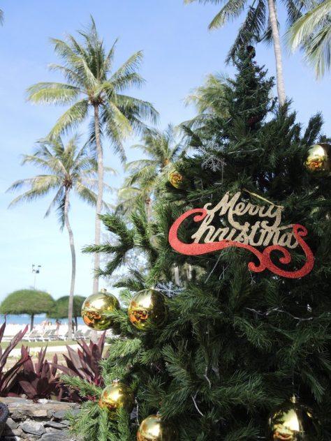 So sieht Weihnachten unter Palmen aus