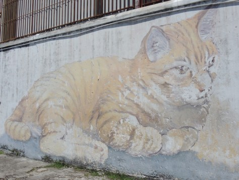 'Skippy' von Artists For Stray Animals