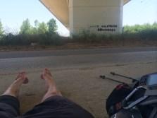 Taking a break in the shade