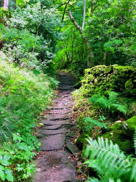 Nun's steps