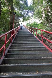 The steps up to Temple 71, Iyadaniji