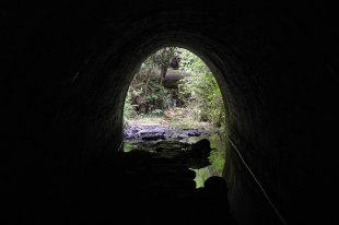 The trail goes under this small road tunnel