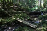 Crossing streams in the forest on the Iseji route