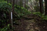 Wooden markers along Tonda zaka slope, Ohechi route