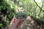 Daifuku mochi - one of my favourite Japanese sweets and a perfect snack for hiking