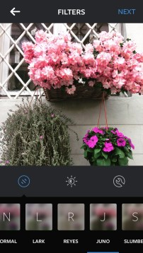 instagram-new-look-new-filter-following-your-passion-photo-juno