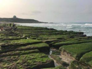 2019老梅綠石槽