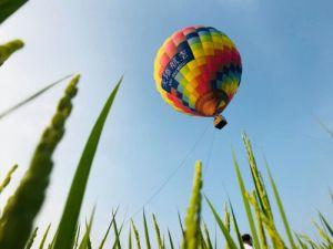 宜蘭熱氣球