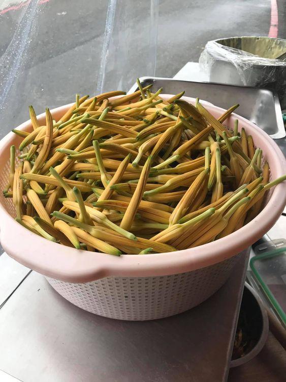 花東縱谷必遊,大池豆皮店,六十石山金針花