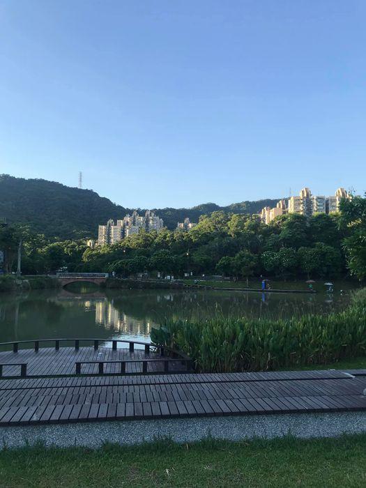 南港公園,冒險森林遊戲場,台北最佳親子景點