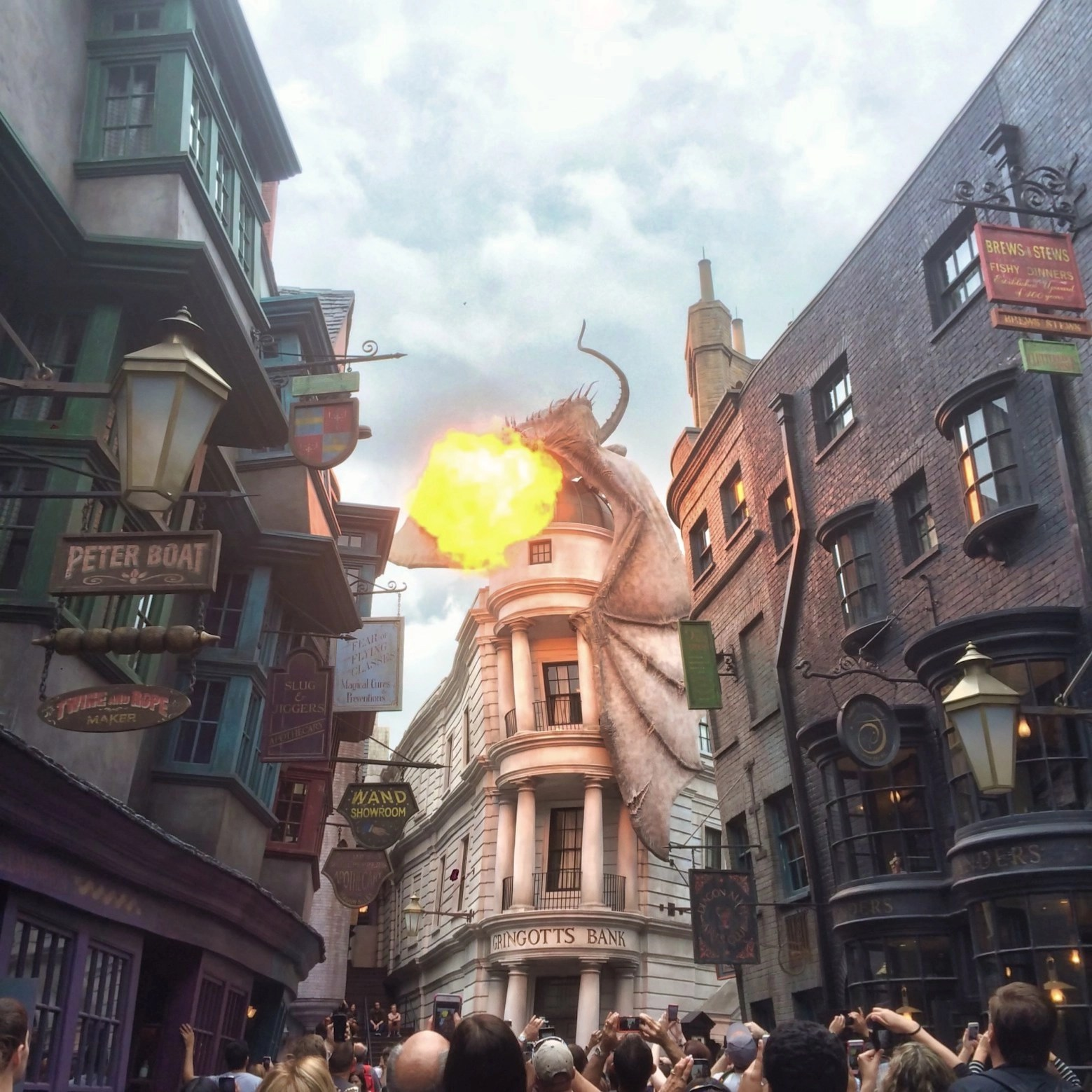 Wizarding World Orlando - Dragon Fire