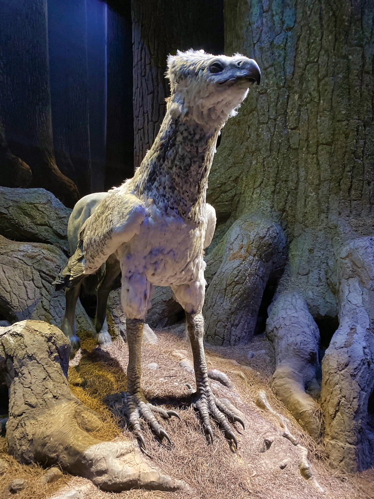 Harry Potter Studio Tour - Forbidden Forest - Buckbeak