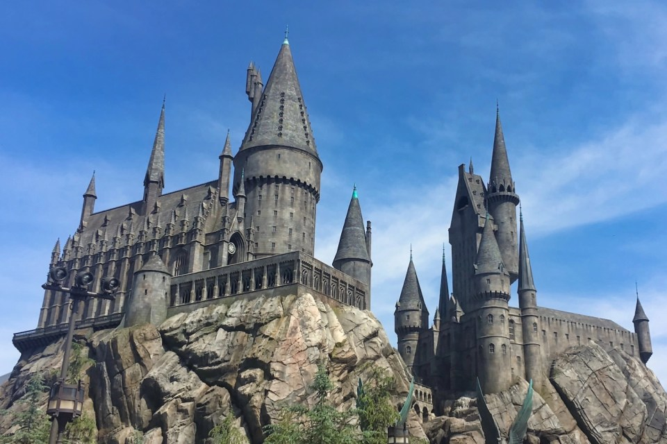 Harry Potter World Hollywood Hero