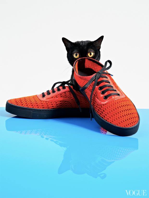 gatinhos-e-sapatos-vogue-01