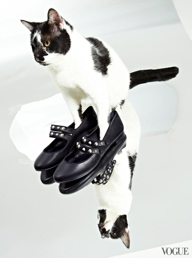 gatinhos-e-sapatos-vogue-19