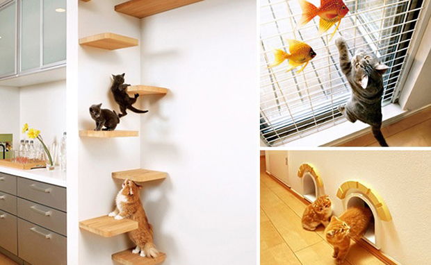 animais de estimação decoração casa dicas
