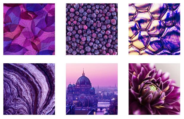 como escolher cor perfeita para sua marca roxo