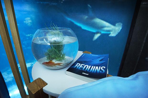 follow-the-colours-airbnb-quarto-embaixo-dagua-aquario-tubaroes-04