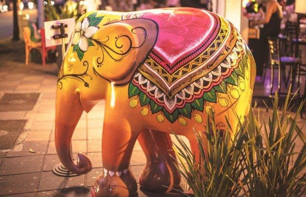 follow-the-colours-amarula-elephant-parade
