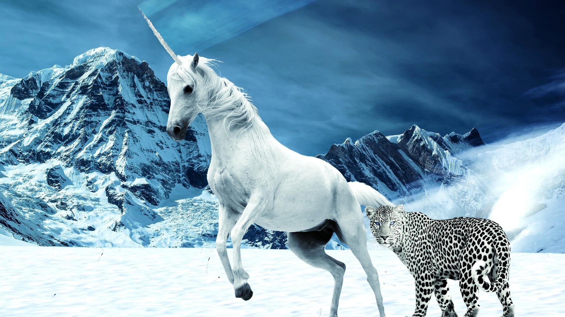 unicorn syndrome