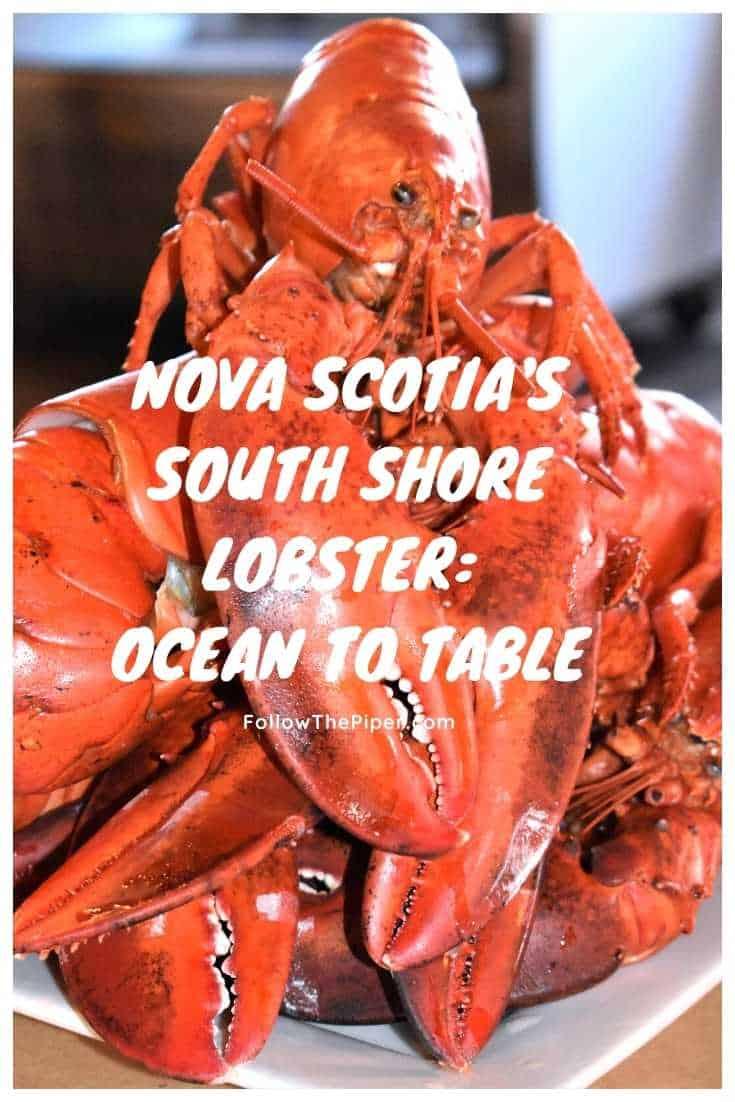 Cooked Nova Scotia Lobster