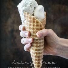 Dairy Free Coconut Ice Cream
