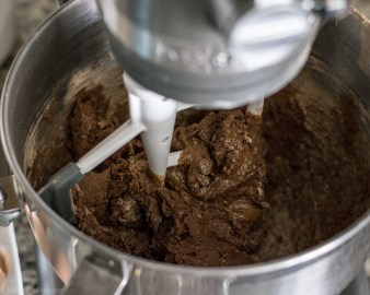 Chocolate Espresso Biscotti-5