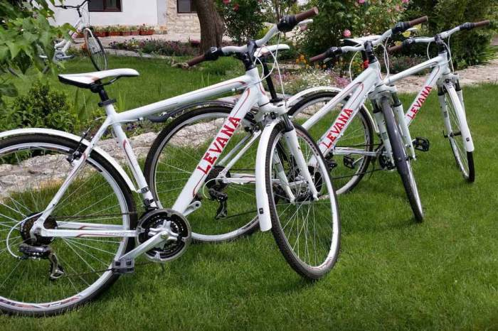 Bycicles to rent in Levana Guest House, Balgarevo