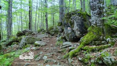 The path to the cave of Ivan Rilski