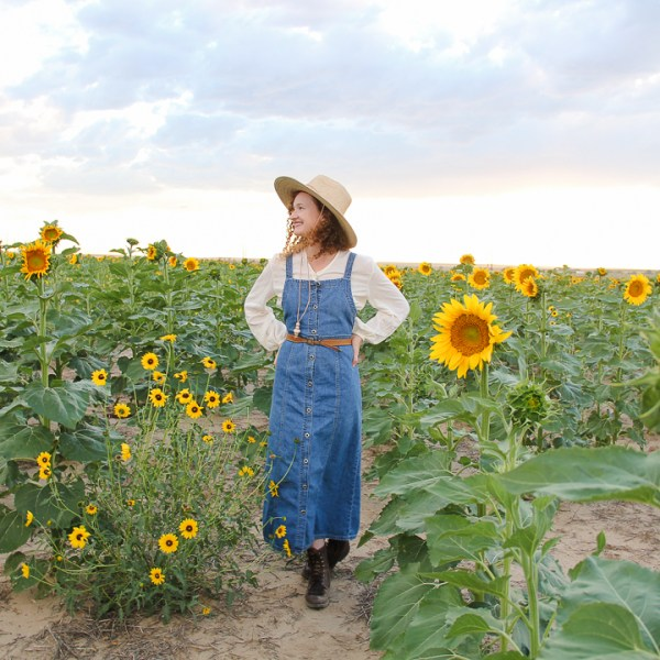 Denver sunflowers