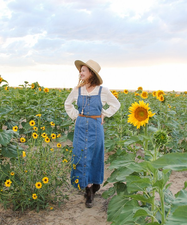 Denver Sunflower Fields