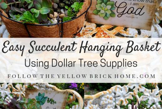 Easy Succulent Hanging Basket Using Dollar Tree Supplies