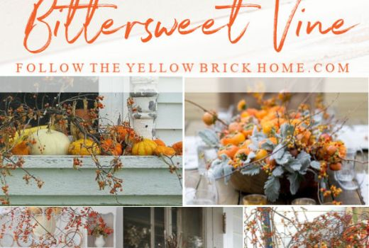 Fall decorating with beautiful bittersweet vine Fall Decorating ideas