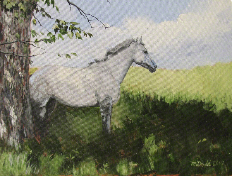 Dapple grey horse painting