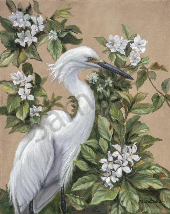 Snowy egret prints
