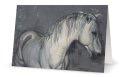 Graceful Stallion