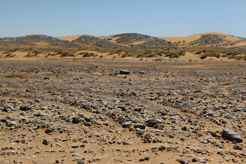 201505_MoroccoFossilHunting-0419