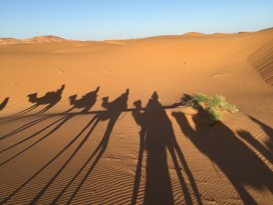 201505_Morocco_iphone-3251