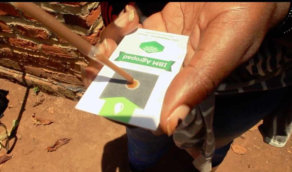 analizar la muestra en el dispositivo