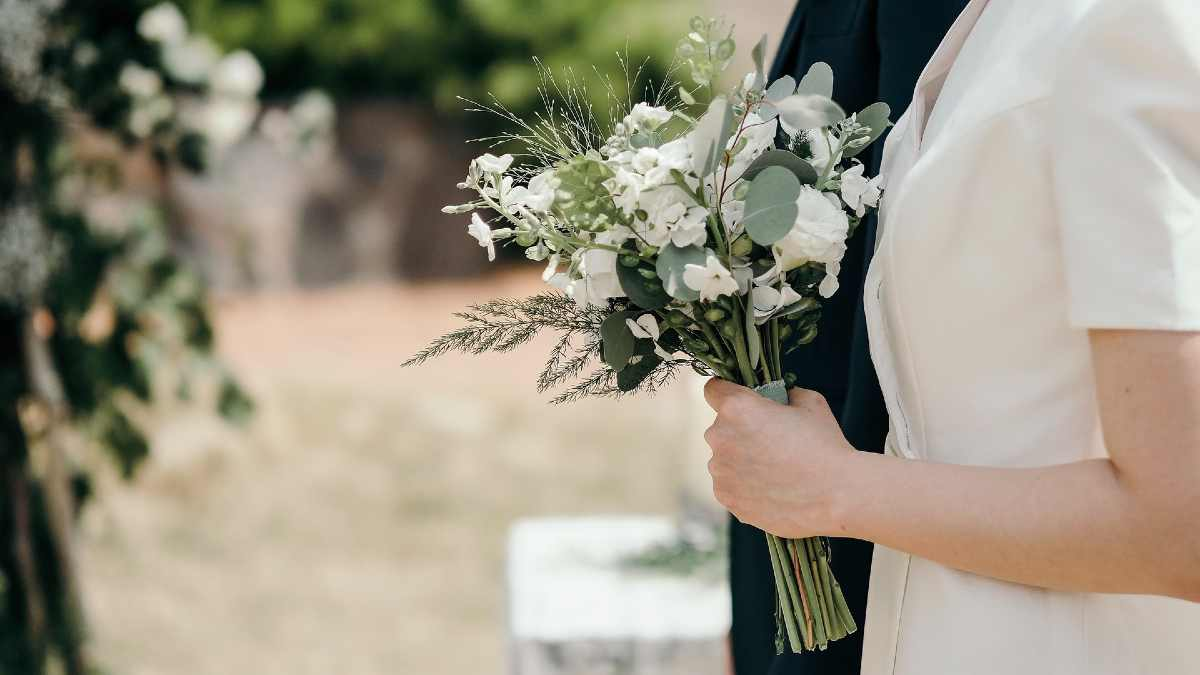 boda online