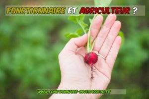 fonctionnaire-agriculteur-cumul