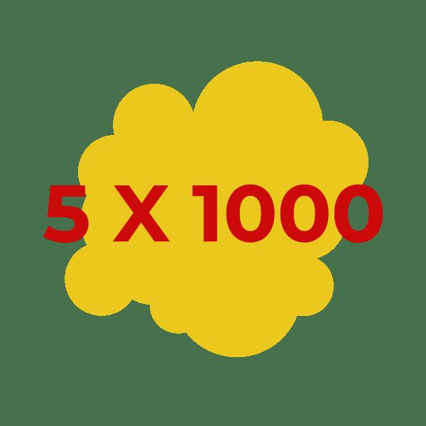 5 x 1000_Tavola disegno 1