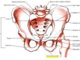 Osteopatia de pubis o síndrome dels adductors