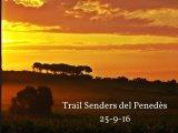 la Trail Senders del Penedès tanca inscripcions el 19