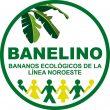 BANELINO