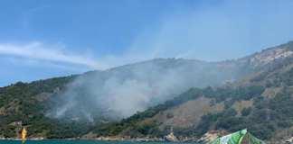 Incêndio pode ter sido causado pela falta de chuva e guimbas de cigarro jogadas na vegetação. Foto: Prefeitura/Reprodução