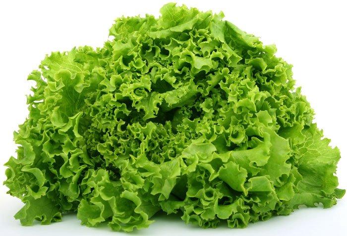 alface beneficios e propriedades - 10 Alimentos que ajudam a emagrecer